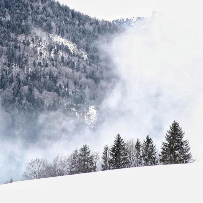 salzburg lucila